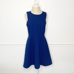 Banana Republic Sleeveless Blue Fit & Flare Dress